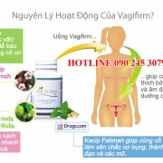 nguyen_ly_hoat_dong_cua_vagifirm